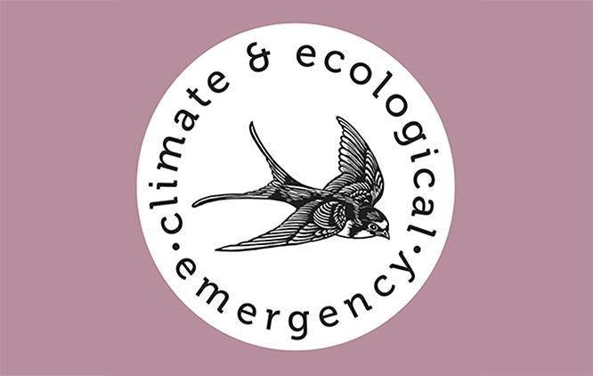 Culture Declares Emergency logo